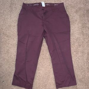PLUS SIZE | Deep Maroon Dress Pants